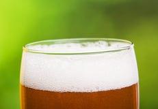 Zbliżenie piwo piana Fotografia Stock
