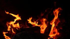 Zbliżenie pożarniczy płomienia i drewna palenie Zdjęcie Stock