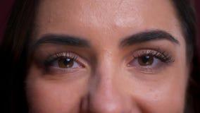 Zbliżenie portret piękny caucasian żeński brąz przygląda się patrzeć prosto przy kamerą z neutralnym wyrazem twarzy zbiory