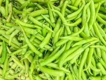 Zbliżenie powierzchni stos zielony pieprz, dzwonkowy pieprz lub słodki pieprz, textured tło Fotografia Stock