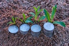 Zbliżenie powstające monety srebne monety przedstawia wzrastającego prętowego wykres Obrazy Stock