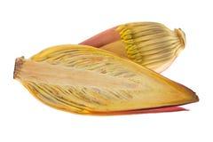 Zbliżenie przekrój poprzeczny świeży surowy bananowy okwitnięcie z wałkoni się pu Obraz Stock
