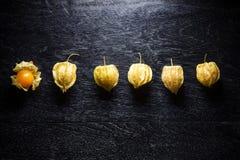 Zbliżenie przylądka pomarańczowi organicznie agresty Obraz Royalty Free