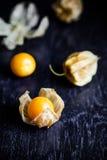 Zbliżenie przylądka pomarańczowi organicznie agresty Fotografia Stock