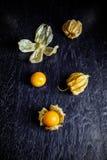 Zbliżenie przylądka pomarańczowi organicznie agresty Zdjęcie Stock