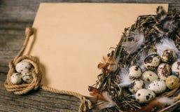 Zbliżenie ptaka gniazdeczko z jajkami i zwitką arkana z przepiórek jajkami w stronie przeciwnej prześcieradło papier dla teksta n Fotografia Royalty Free