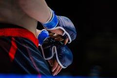 Zbliżenie rękawiczek bokser Obraz Stock