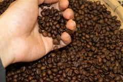 Zbliżenie ręki chwyt Piec kawę w koszu Zdjęcie Stock
