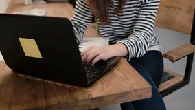 Zbliżenie ręki młoda atrakcyjna dziewczyna używa laptop w nowożytnym początkowym biurze Obraz Stock