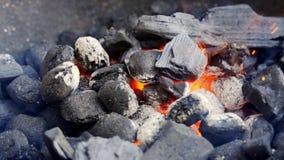 Zbliżenie rozjarzony węgiel w metalu grillu na letnim dniu w zwolnionym tempie zdjęcie wideo