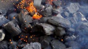 Zbliżenie rozjarzony węgiel w metalu grillu na letnim dniu w zwolnionym tempie zbiory wideo