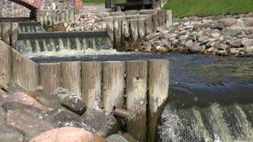 Zbliżenie rzeczny strumyk siklawy wody schodków płynąć 4K zdjęcie wideo
