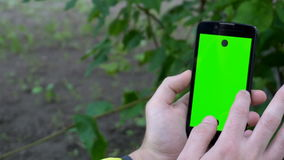 Zbliżenie samiec wręcza mienia smartphone z zielonymi ekranów skutkami Natura w tle zbiory