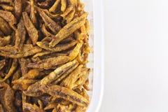 Zbliżenie Smażyć sardele, azjatykci jedzenie Obraz Stock