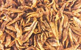 Zbliżenie Smażyć sardele, azjatykci jedzenie Obrazy Stock