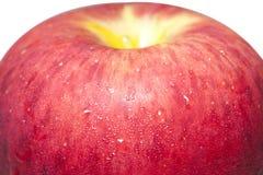 Zbliżenie soczysty jabłko II Obraz Royalty Free