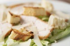 Zbliżenie strzelał świeża prosta Caesar sałatka z kurczakiem Fotografia Stock