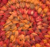 Zbliżenie szydełkowy gałganiany dywanik obrazy royalty free