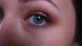 Zbliżenie twarzy przyrodni portret potomstwo dosyć caucasian brunetki żeński patrzeć prosto przy kamerą zbiory wideo