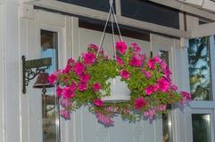 Zbliżenie waży plantatorów z kwiatami Obrazy Royalty Free