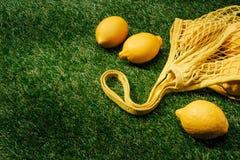 zbliżenie widok cytryny i sieć zdjęcie royalty free