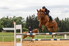 Zbliżenie widok jeździec w czerwonej kurtce na białym koniu Fotografia Stock