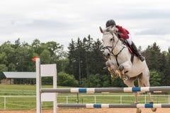 Zbliżenie widok jeździec w czerwonej kurtce na białym koniu Zdjęcie Royalty Free