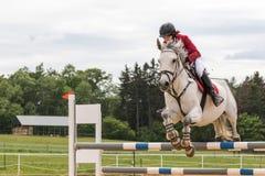 Zbliżenie widok jeździec w czerwonej kurtce na białym koniu Zdjęcia Royalty Free