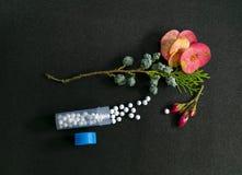 Zbliżenie wizerunek Homeopatyczna medycyna z butelką zawiera sugarball homeopatyczna substancja z świeżymi dzikimi menchiami kwit zdjęcia royalty free