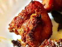 Zbliżenie wizerunek Kerala kurczaka korzenny dłoniak Fotografia Stock