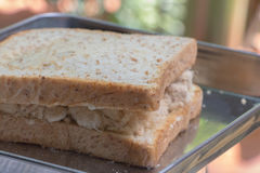 Zbliżenie wyśmienicie tajlandzki śniadaniowy zdrowy świeży chleb z smakowitym słodkim wieprzowiny floss Fotografia Stock
