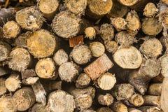 Zbliżenie wzór tnąca drewniana sterta dla tło użytkownika Zdjęcie Royalty Free
