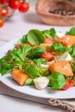 Zbliżenie zdrowa sałatka z łososiem Obraz Royalty Free