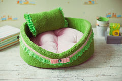 Zbliżenie zieleni zwierzęcia domowego materac Fotografia Royalty Free