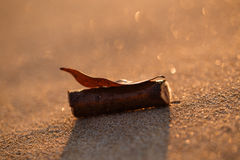 Zbliżenie zmierzch plaży piasek z liściem i drewnianym kijem Obraz Stock