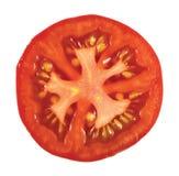 zbliżenia tomatoe odosobniony makro- Zdjęcia Stock