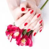 Zbliżenia wizerunek czerwony manicure z kwiatami Obrazy Stock