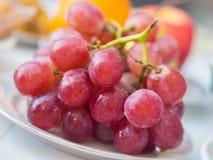 Zbliżenie czerwoni winogrona Fotografia Stock