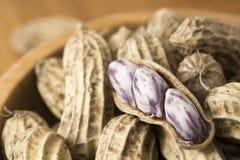 Zbliżenie dla arachidów Zdjęcia Royalty Free