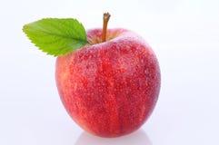 Zbliżenie Galowy Apple Zdjęcia Stock