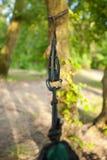 Zbliżenie hamak patki na drzewie Zdjęcie Stock