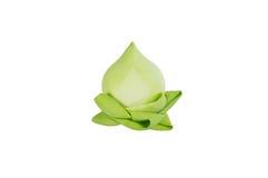 Zbliżenie Lotus Zdjęcia Royalty Free