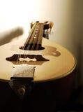 zbliżenie mandolina Obrazy Stock