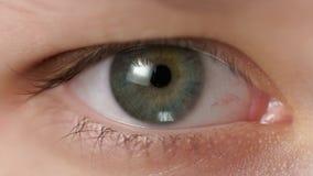 Zbliżenie nastoletniej dziewczyny zielony oko patrzeje prosto Zdjęcie Stock