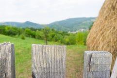 zbliżenie ogrodzenie z ogródem i siano w tle Zdjęcie Royalty Free