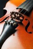zbliżenie skrzypce Obraz Royalty Free