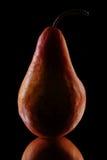zbliżenie stara pear Obrazy Stock