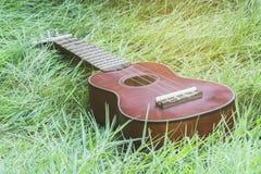 Zbliżenie ukulele na trawy tle Obrazy Stock