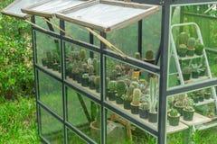 Zbliżenie zielony dom w domu ogródzie Zdjęcia Royalty Free