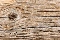 zbliżenie tekstury naturalne drewna Fotografia Royalty Free